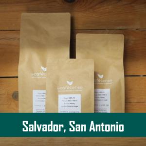 Salvador, San Antonio